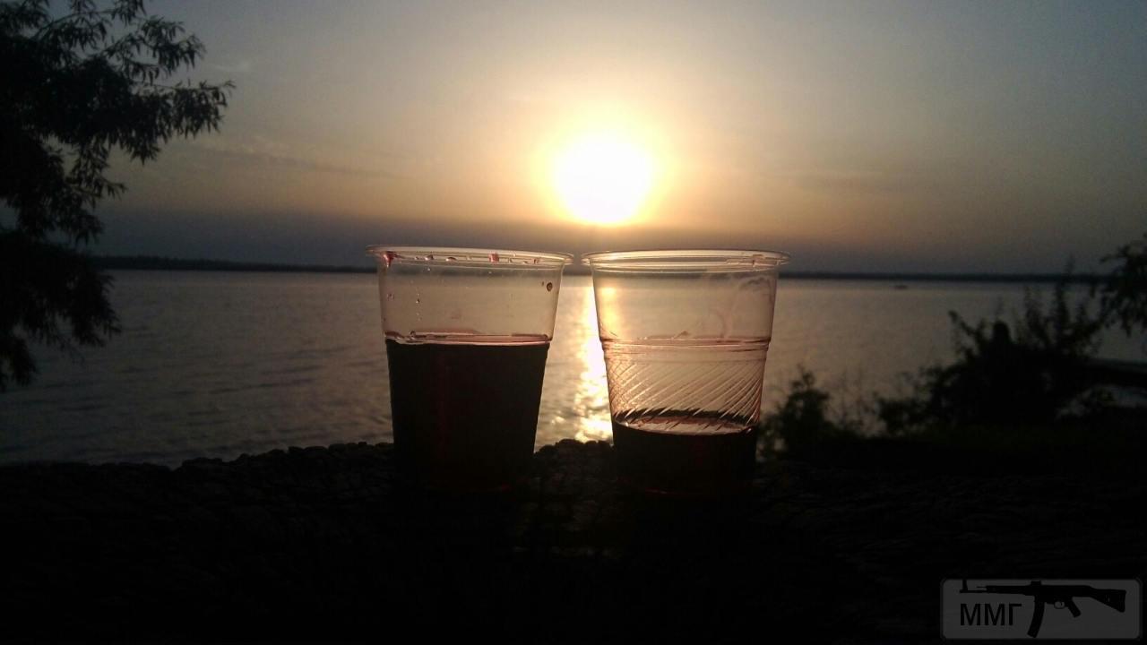 31495 - Пить или не пить? - пятничная алкогольная тема )))