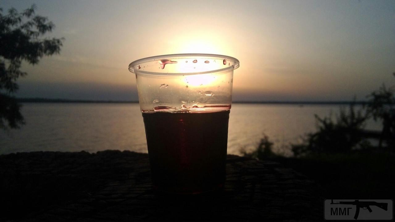 31497 - Пить или не пить? - пятничная алкогольная тема )))