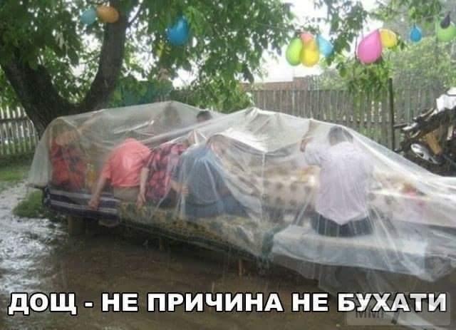 31527 - Пить или не пить? - пятничная алкогольная тема )))