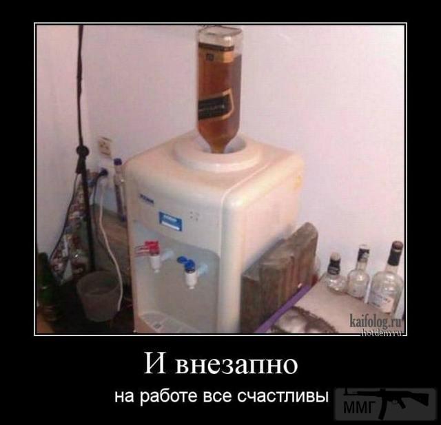 31543 - Пить или не пить? - пятничная алкогольная тема )))