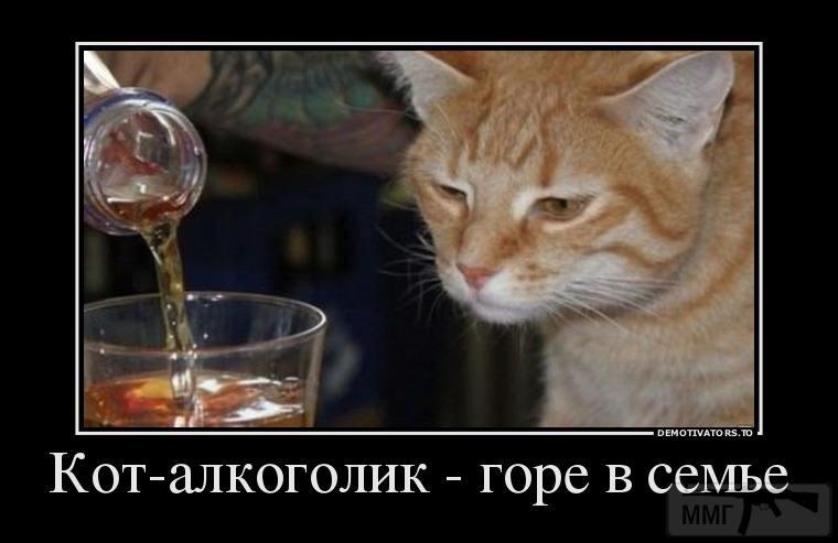 32778 - Пить или не пить? - пятничная алкогольная тема )))