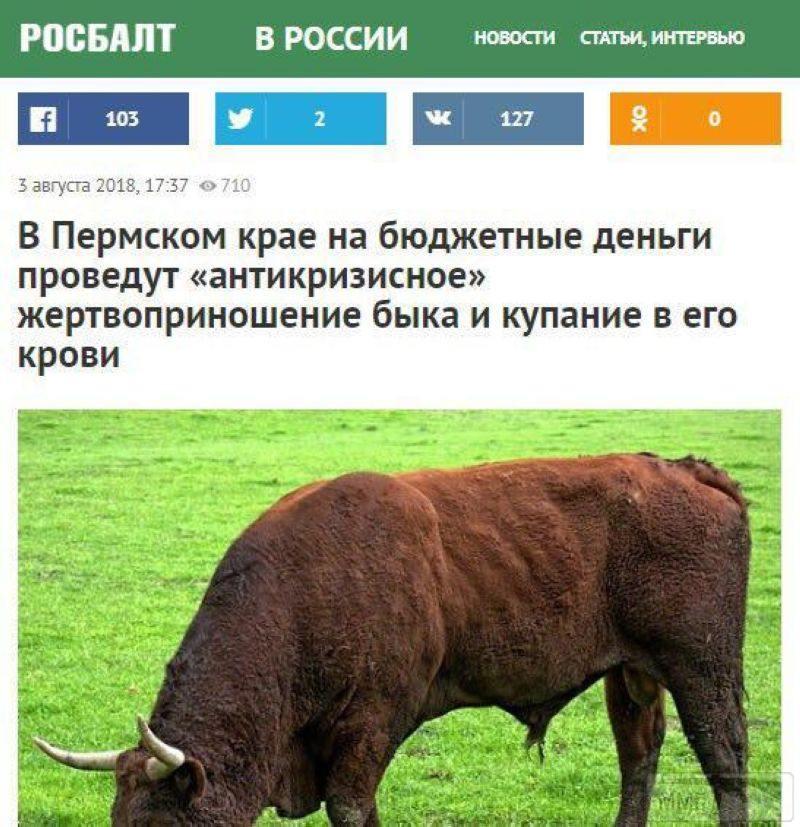33200 - А в России чудеса!