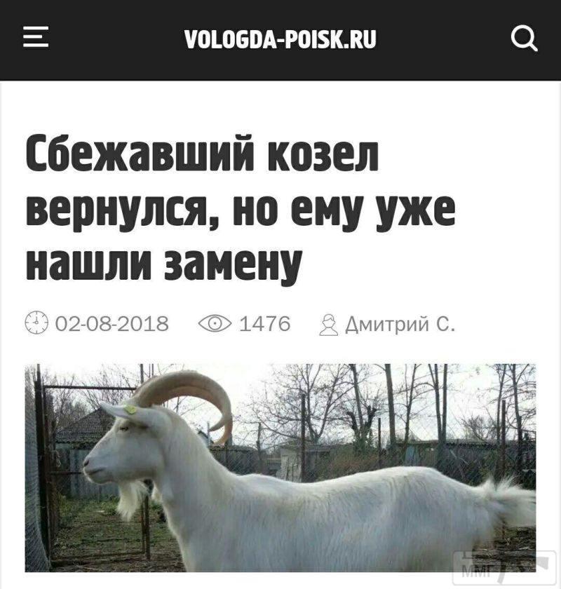 33202 - А в России чудеса!