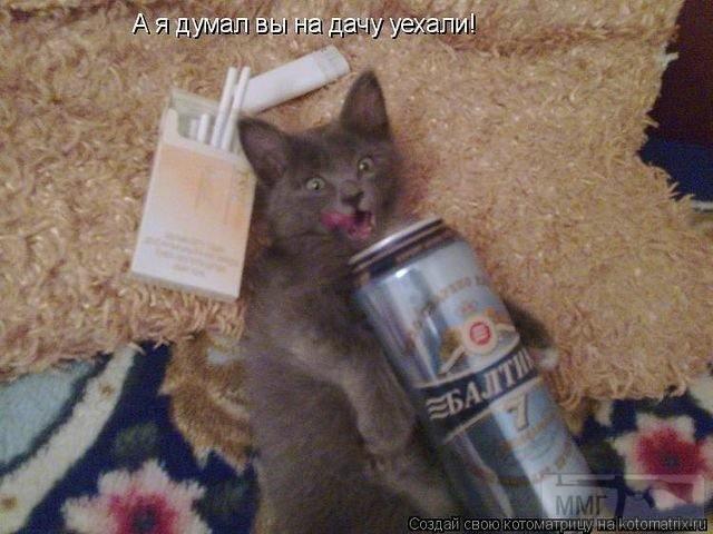 33220 - Пить или не пить? - пятничная алкогольная тема )))