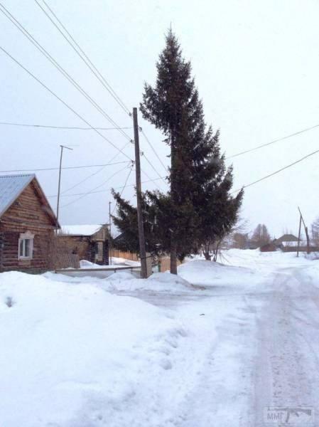 33290 - А в России чудеса!