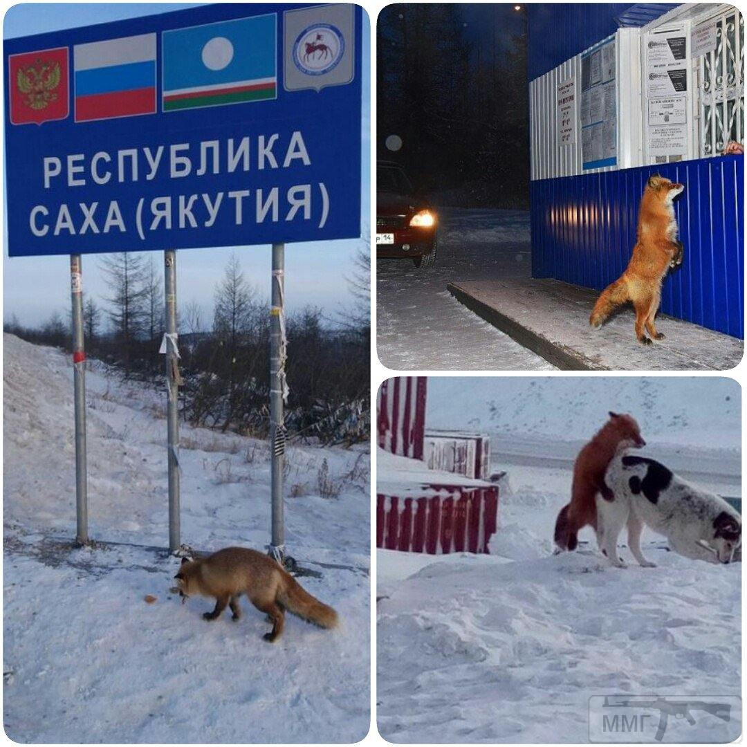 33346 - А в России чудеса!