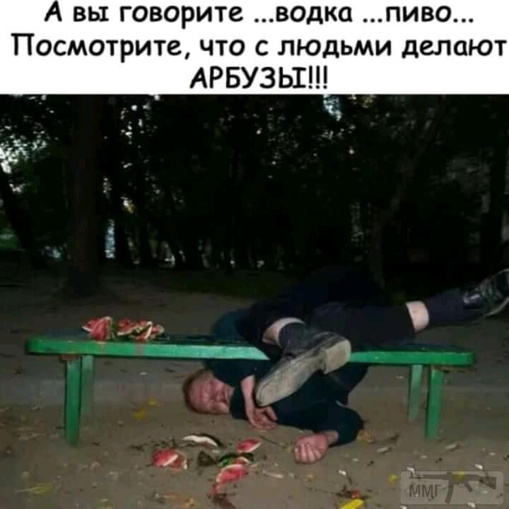 33542 - Пить или не пить? - пятничная алкогольная тема )))