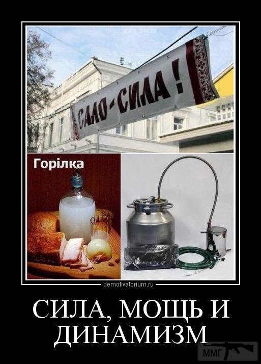 33764 - Пить или не пить? - пятничная алкогольная тема )))