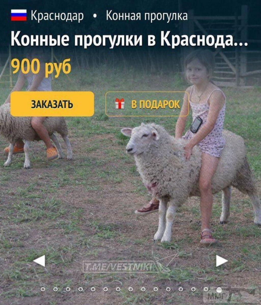 35754 - А в России чудеса!