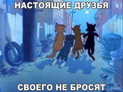 36117 - Пить или не пить? - пятничная алкогольная тема )))
