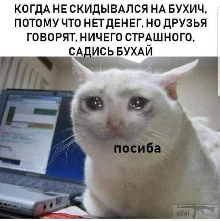 36118 - Пить или не пить? - пятничная алкогольная тема )))