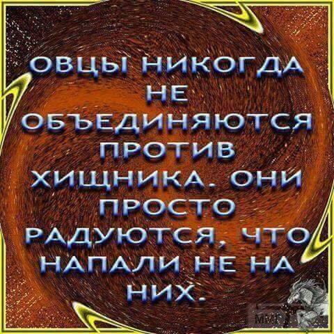 36365 - А в России чудеса!