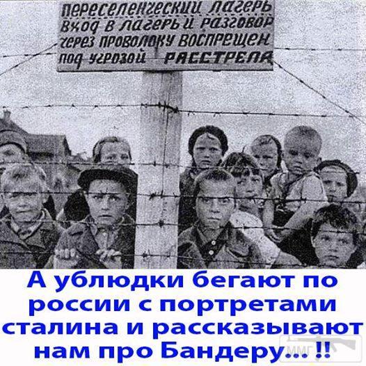 36865 - А в России чудеса!