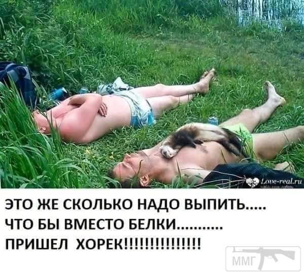 37142 - Пить или не пить? - пятничная алкогольная тема )))