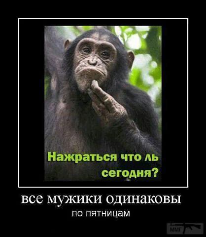 37218 - Пить или не пить? - пятничная алкогольная тема )))