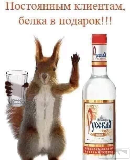 38021 - Пить или не пить? - пятничная алкогольная тема )))