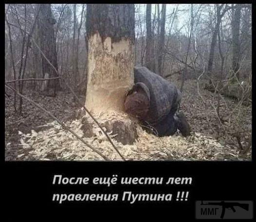 38258 - А в России чудеса!