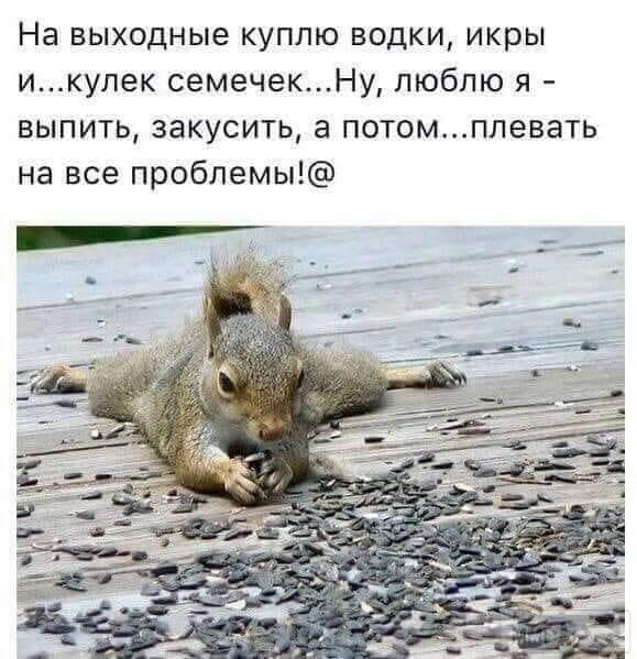 38731 - Пить или не пить? - пятничная алкогольная тема )))