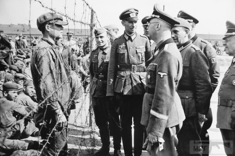 38854 - Военное фото 1941-1945 г.г. Восточный фронт.