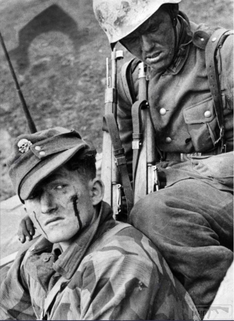 40162 - Военное фото 1941-1945 г.г. Восточный фронт.