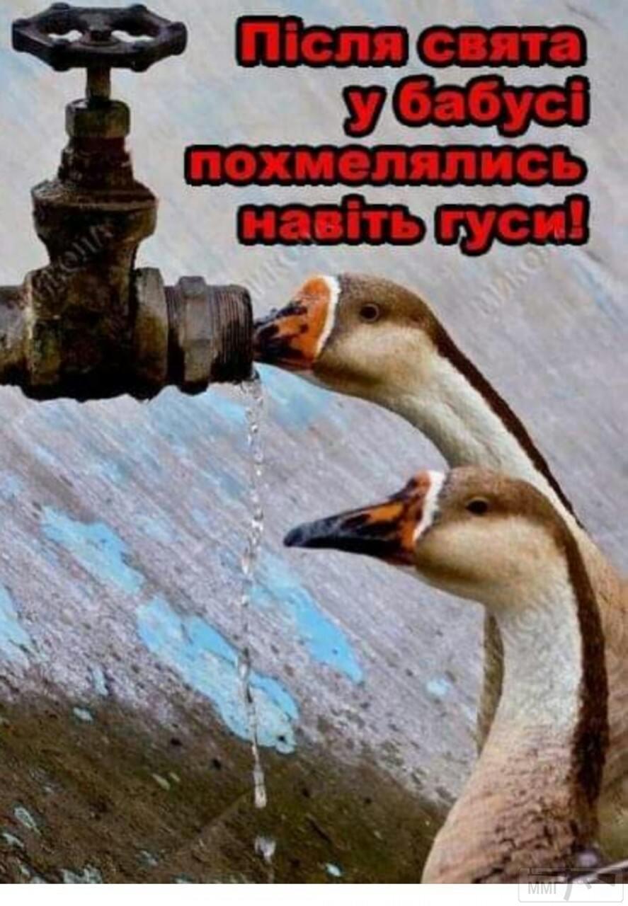 41777 - Пить или не пить? - пятничная алкогольная тема )))