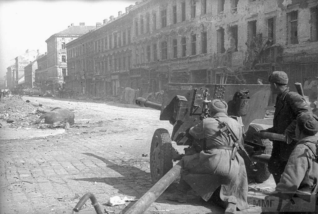 43165 - Военное фото 1941-1945 г.г. Восточный фронт.