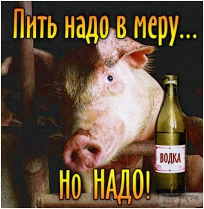 43528 - Пить или не пить? - пятничная алкогольная тема )))