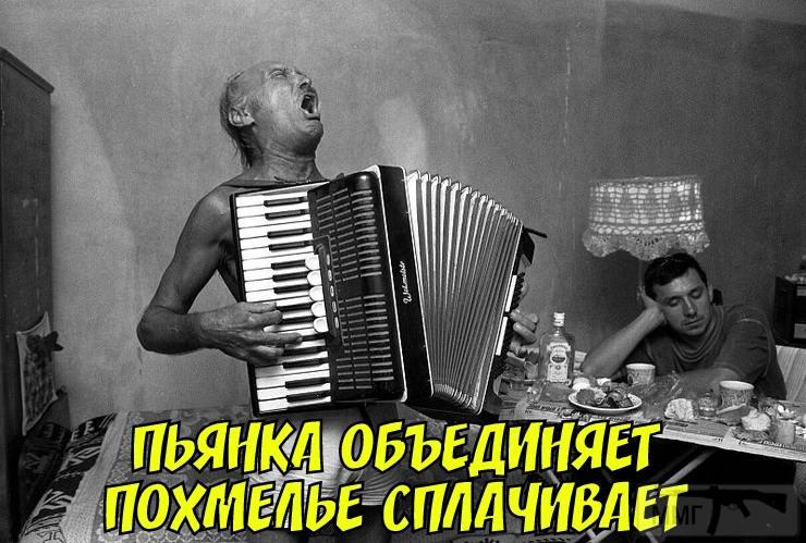 44893 - Пить или не пить? - пятничная алкогольная тема )))