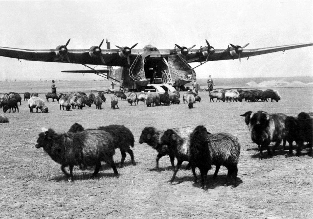 4543 - Самолеты Luftwaffe