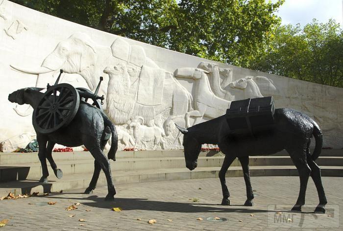 45506 - Животные на войне