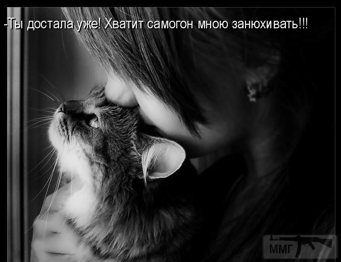 45926 - Пить или не пить? - пятничная алкогольная тема )))