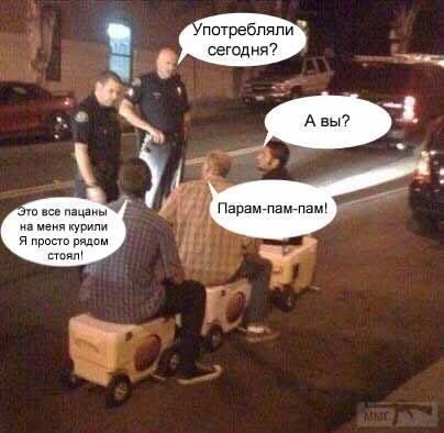 46028 - Пить или не пить? - пятничная алкогольная тема )))