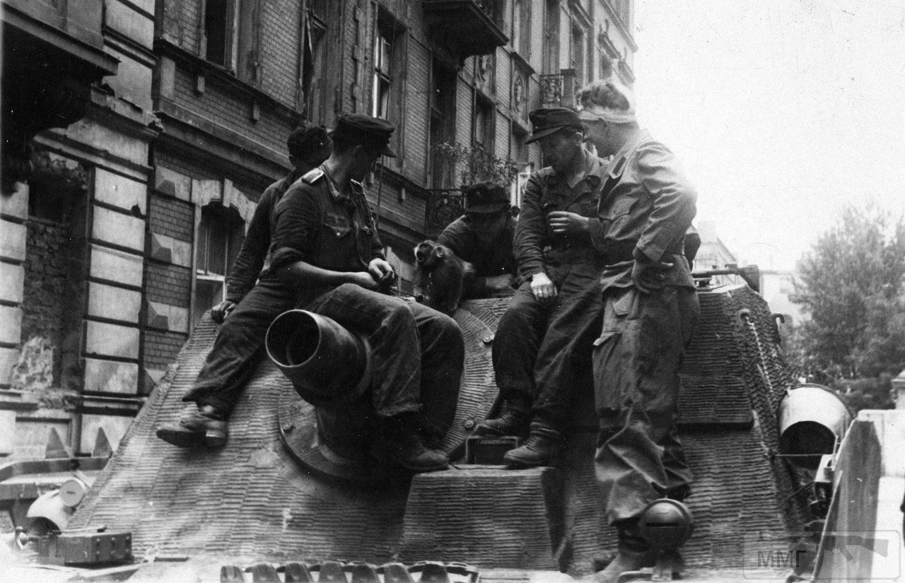 48667 - Военное фото 1941-1945 г.г. Восточный фронт.