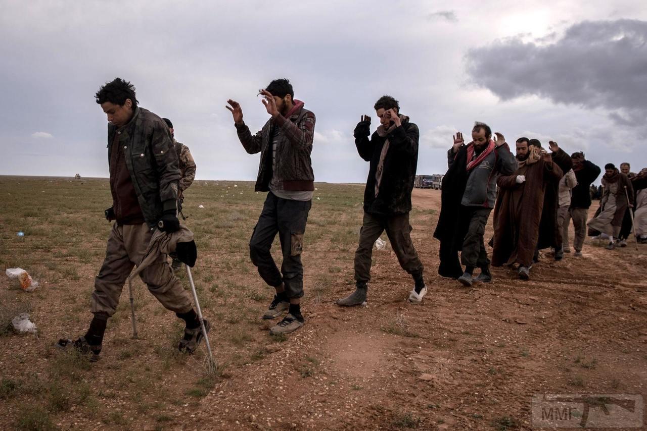 49683 - Сирия и события вокруг нее...