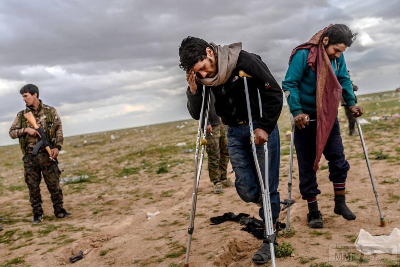 49688 - Сирия и события вокруг нее...