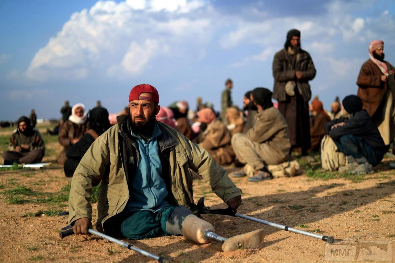 49690 - Сирия и события вокруг нее...