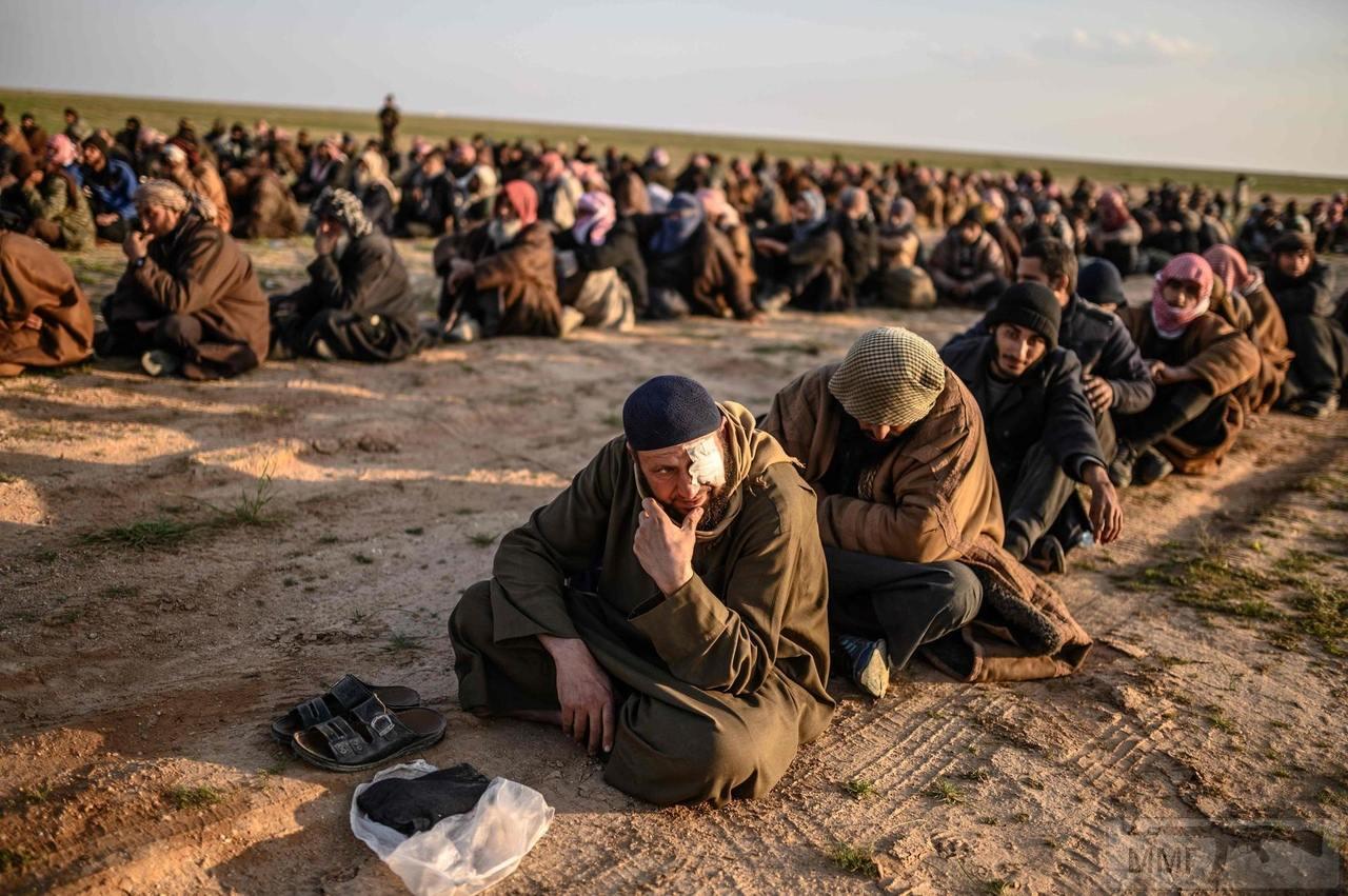 49691 - Сирия и события вокруг нее...