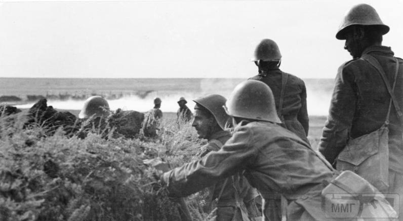 50082 - Союзники Германии на Восточном фронте