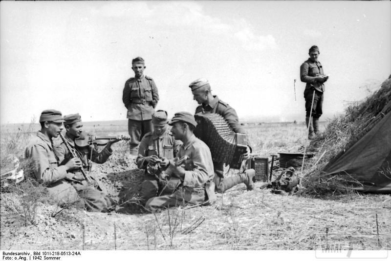 50083 - Союзники Германии на Восточном фронте