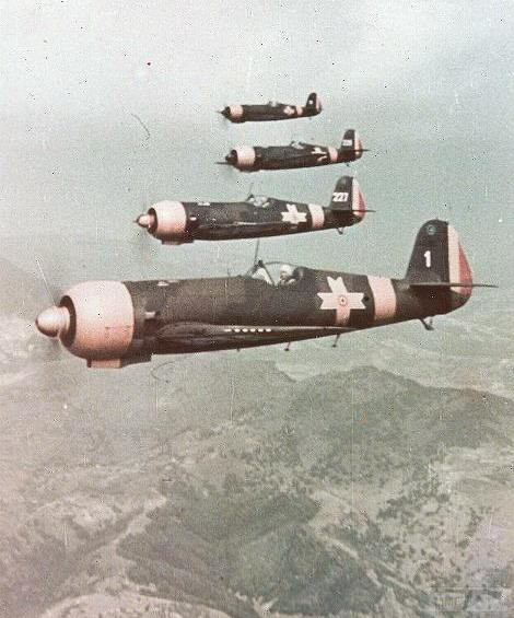 50084 - Союзники Германии на Восточном фронте
