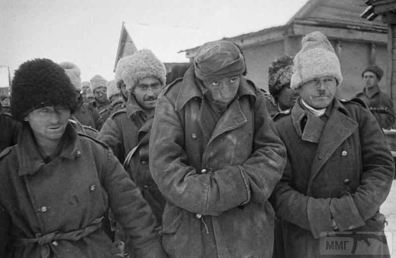 50087 - Союзники Германии на Восточном фронте