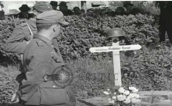 51294 - Военное фото 1939-1945 г.г. Западный фронт и Африка.