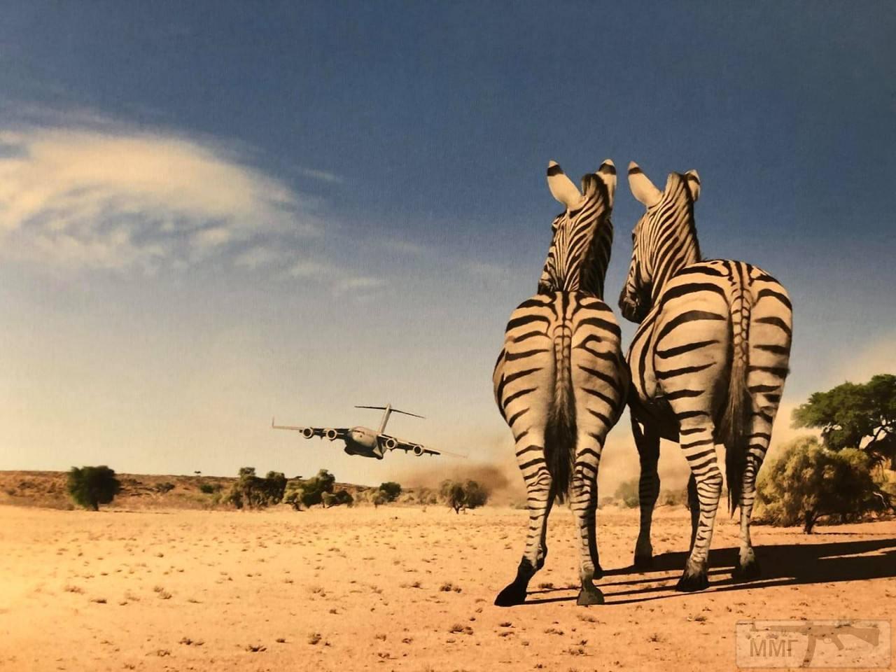 51477 - Красивые фото и видео боевых самолетов и вертолетов