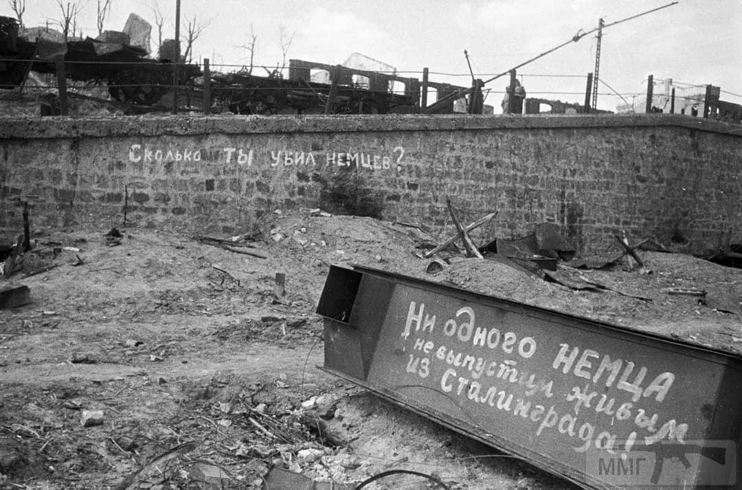 51719 - Военное фото 1941-1945 г.г. Восточный фронт.