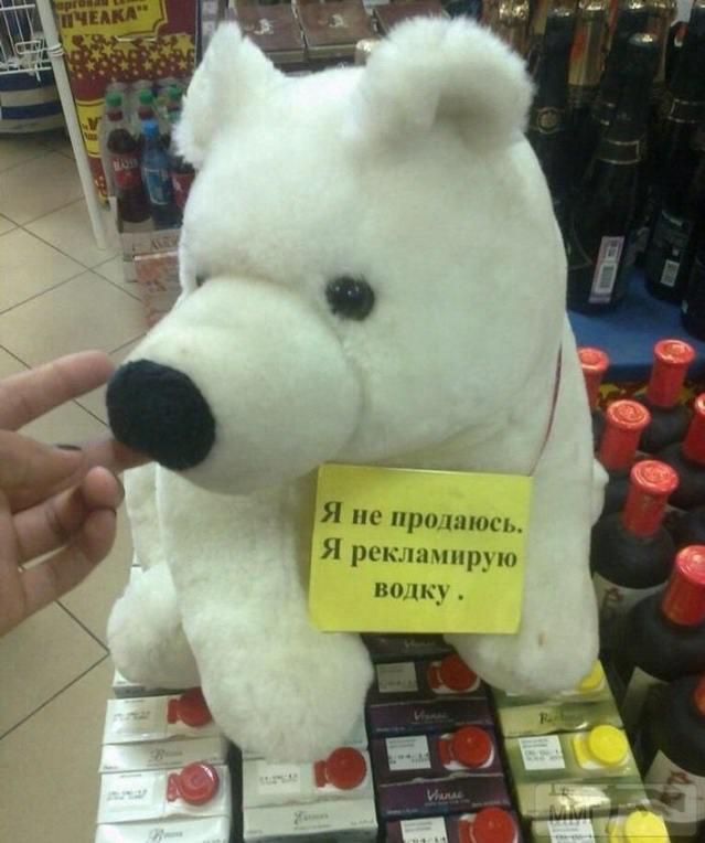 52470 - Пить или не пить? - пятничная алкогольная тема )))