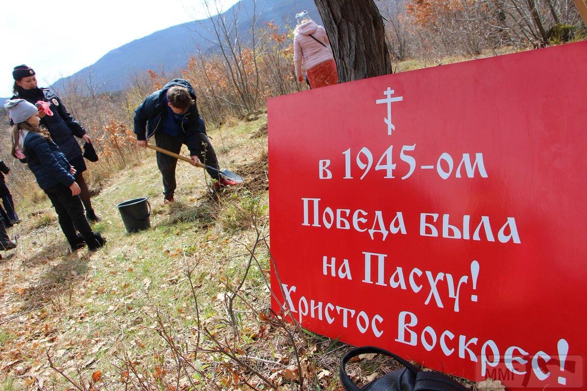52849 - А в России чудеса!
