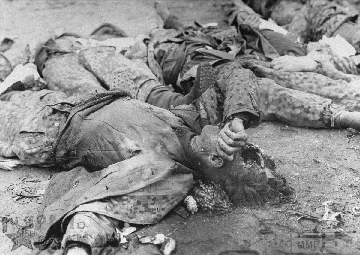 53807 - Военное фото 1939-1945 г.г. Западный фронт и Африка.