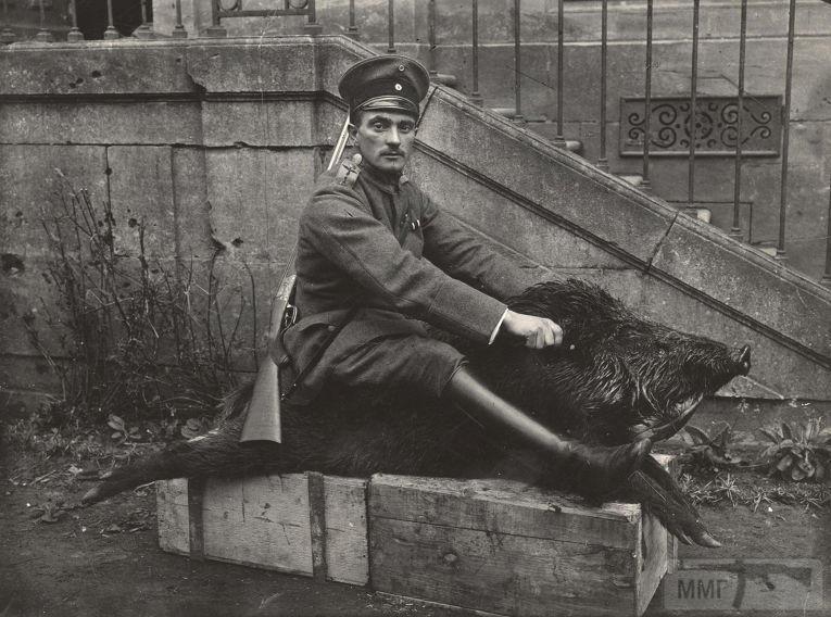 54651 - Военное фото. Западный фронт. 1914-1918г.г.