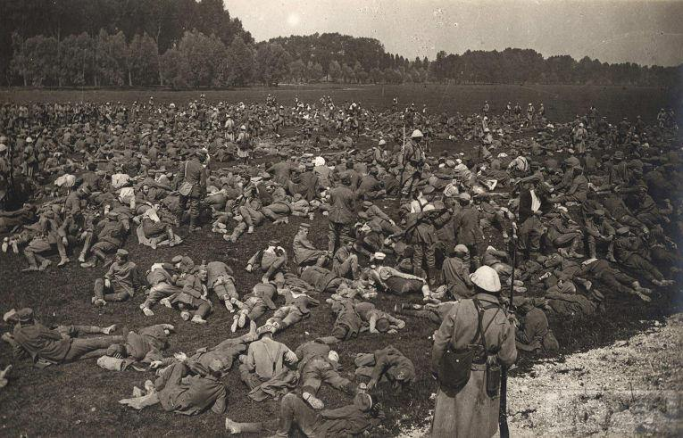 54655 - Военное фото. Западный фронт. 1914-1918г.г.