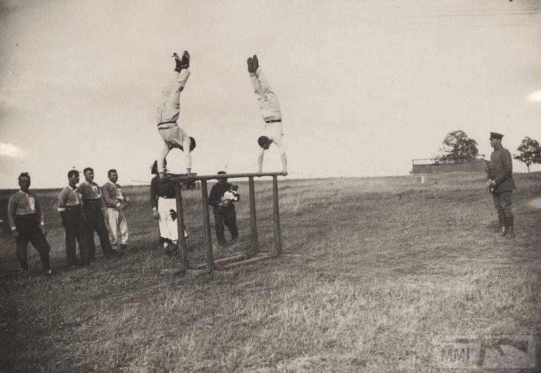 54656 - Военное фото. Западный фронт. 1914-1918г.г.